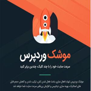افزونه حرفه ای WP Rocket